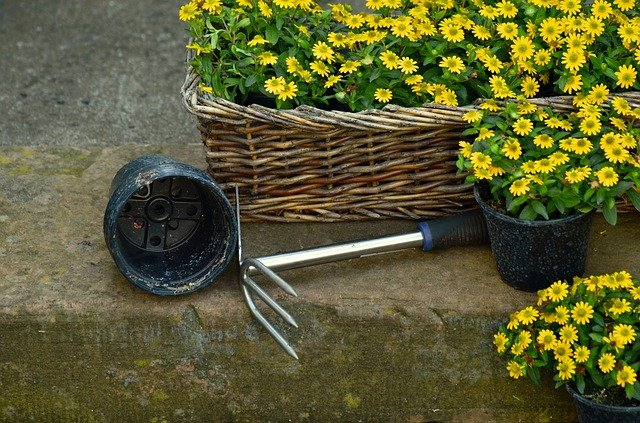 garden tool next to flowers in baskets and pots